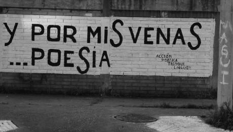 Y_por_mis_venas_poesia-copi