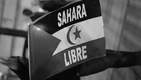 free_sahara_by_khaotico